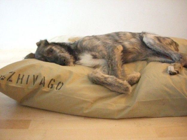 Unique Dog Bed Covers, TOUGH Dog Beds, Durable Pet Beds, Dog Crate Covers at Affordable Prices! ($20-50) - Svpply