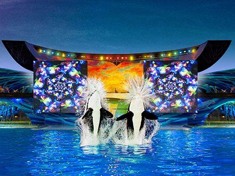 Shamu S Celebration Light Up The Night Seaworld San Diego Sea World San Diego
