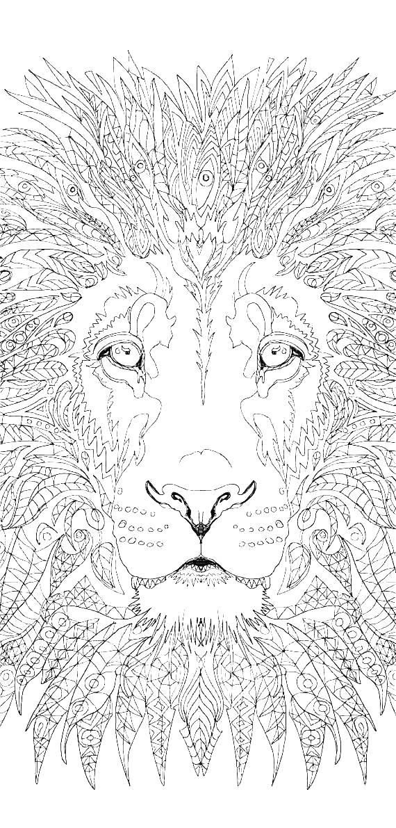Narnia Coloring Pages Best Coloring Pages For Kids In 2020 Lion Coloring Pages Witch Coloring Pages Zoo Coloring Pages