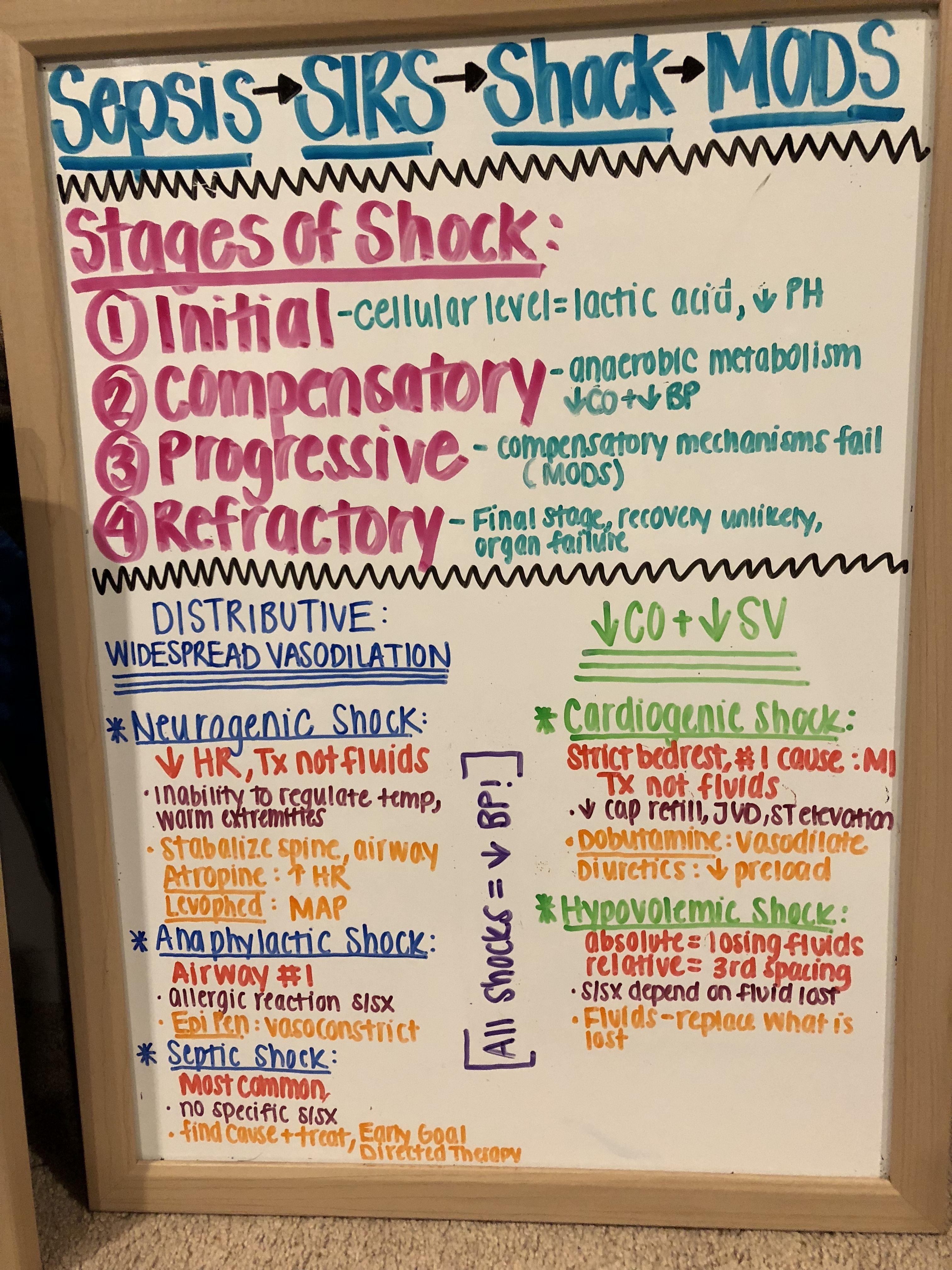 1 Year Nurse Practitioner Programs Online Nursingschoolsinhouston Nurse Practitioner Programs Nursing School Survival