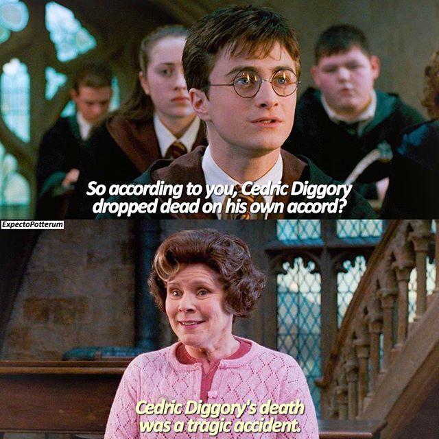 Harry S And Umbridge S Roasts Are Legendary Harrypotter Theorderofthephoenix Guys I M Finally Ge Harry Potter Universal Harry Potter Movies Harry Potter