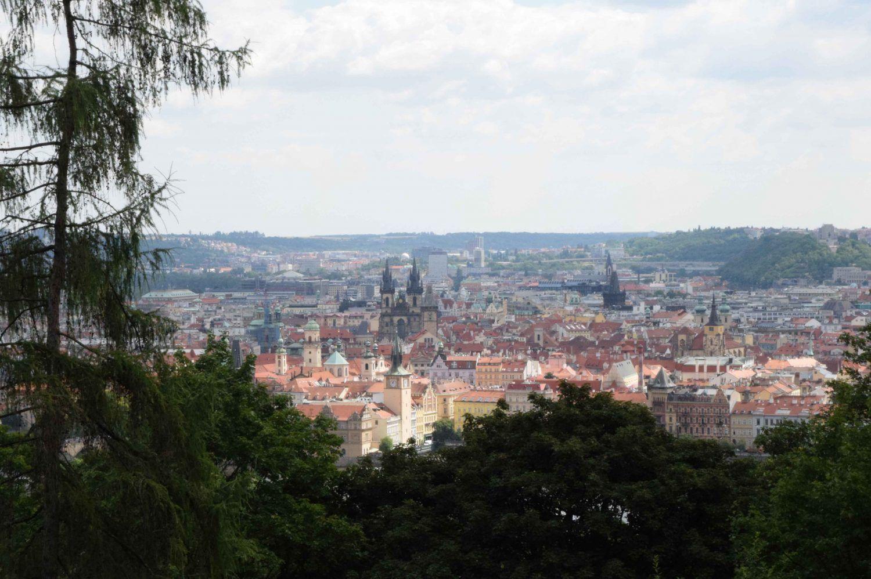 Cómo Ir De Viena A Praga 4 Opciones Los Traveleros Praga Viena Viajes