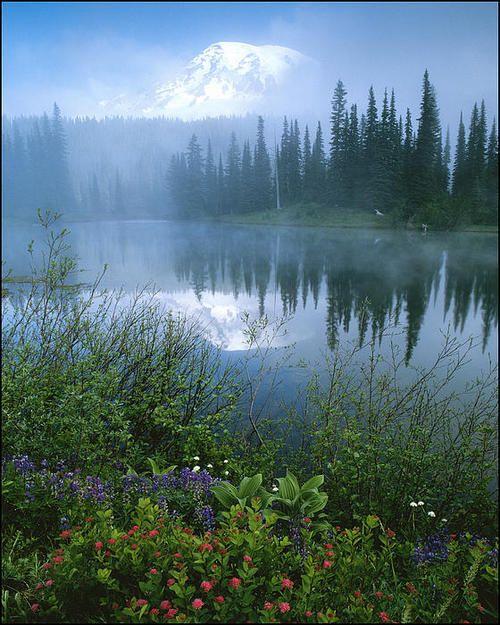 Fog at Reflection Lakes, by Pete Dorman.  Mount Rainier, Washington.