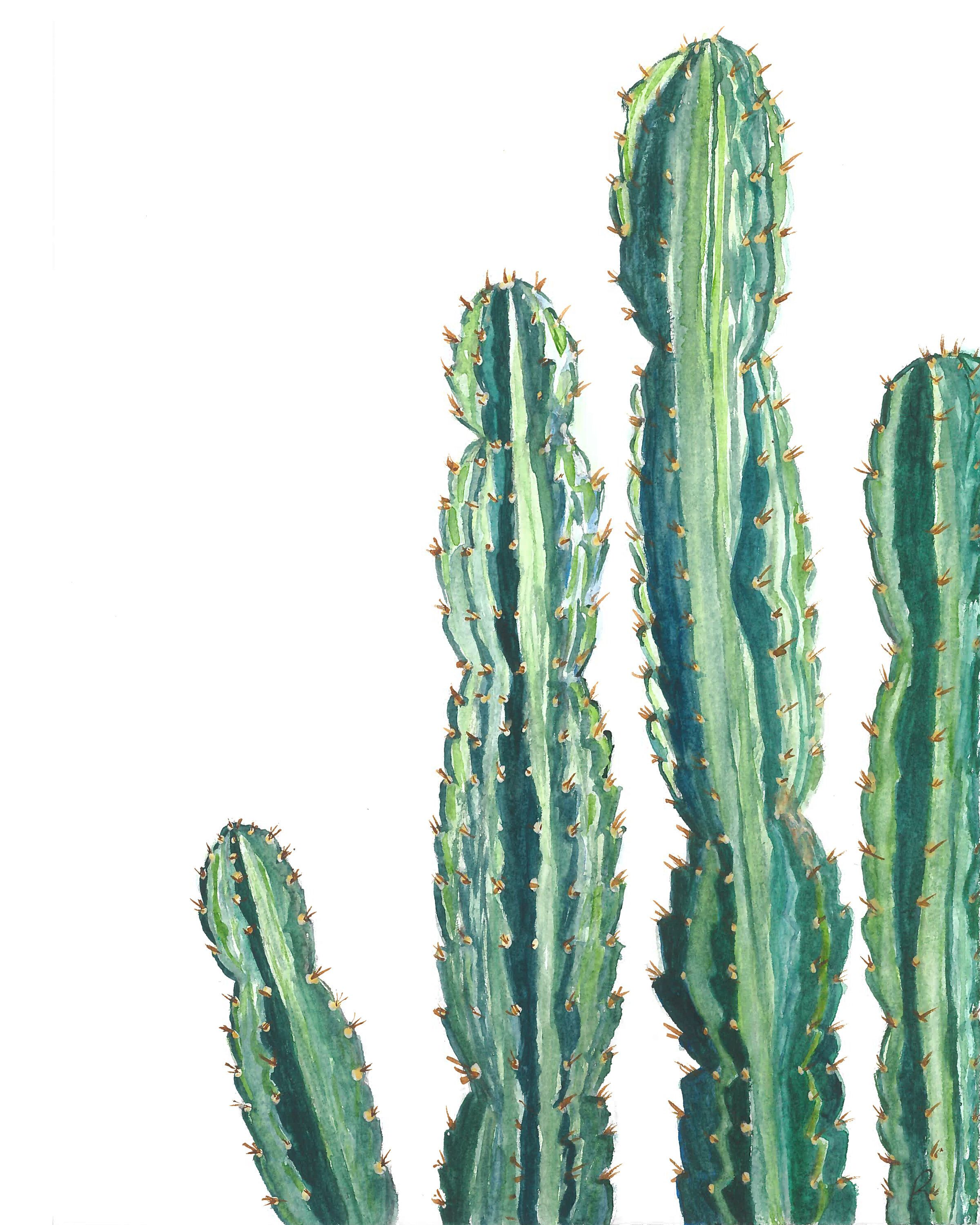 Cactus watercolor art print, cactus wall art, cactus decor, desert decor, modern artwork, cacti art, nursery decor, cactus drawing