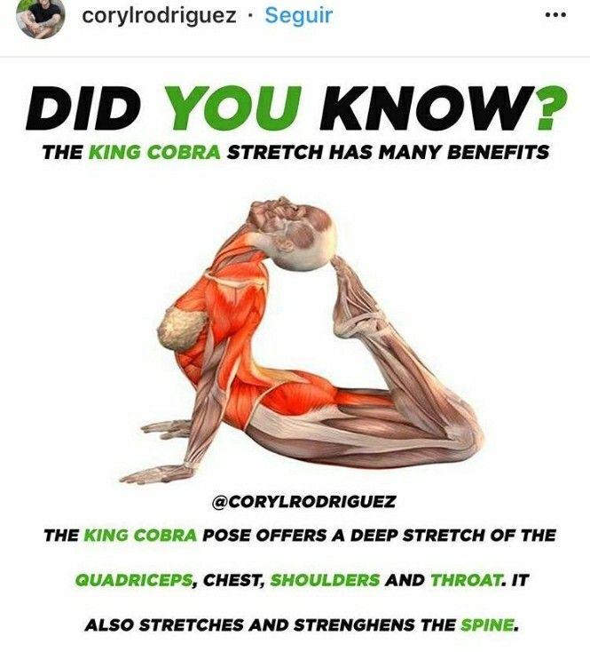 King Cobra Yoga Pose | Back Pain | Pinterest - Fitnessoefeningen