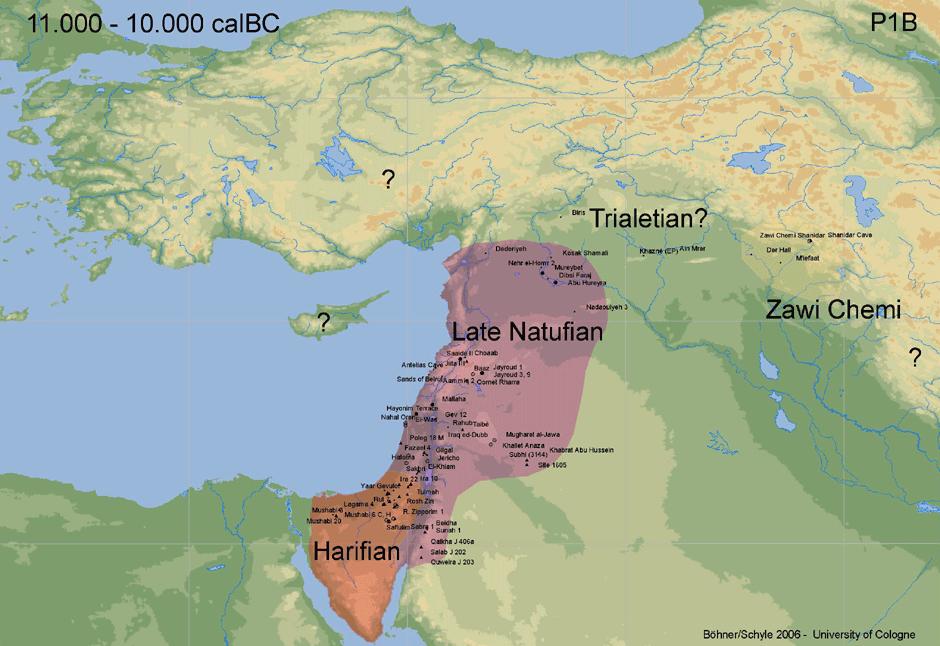 11000 10000 BC HistoryX Pinterest History Human evolution