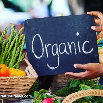 WARNING!  USDA allowing over 20 synthetic substances in organic foods.  Continue Reading  http://snip.ly/lptfh  #USDA #organicfood #syntheticingredients  #mikeadams #thehealthranger #vickibatts #naturalnews #organicgoods #challengetheusda #nosb #cornucopiainstitute #reason_com #capitalpress #promulgatedcontracts #landofthemidnightsun #sunsetprocess #districtjudgehaywoodgillianjr #legalstanding #California