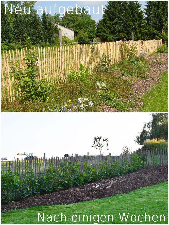 staketenzaun diy: aufbau des zaun, materialauswahl, holzart und