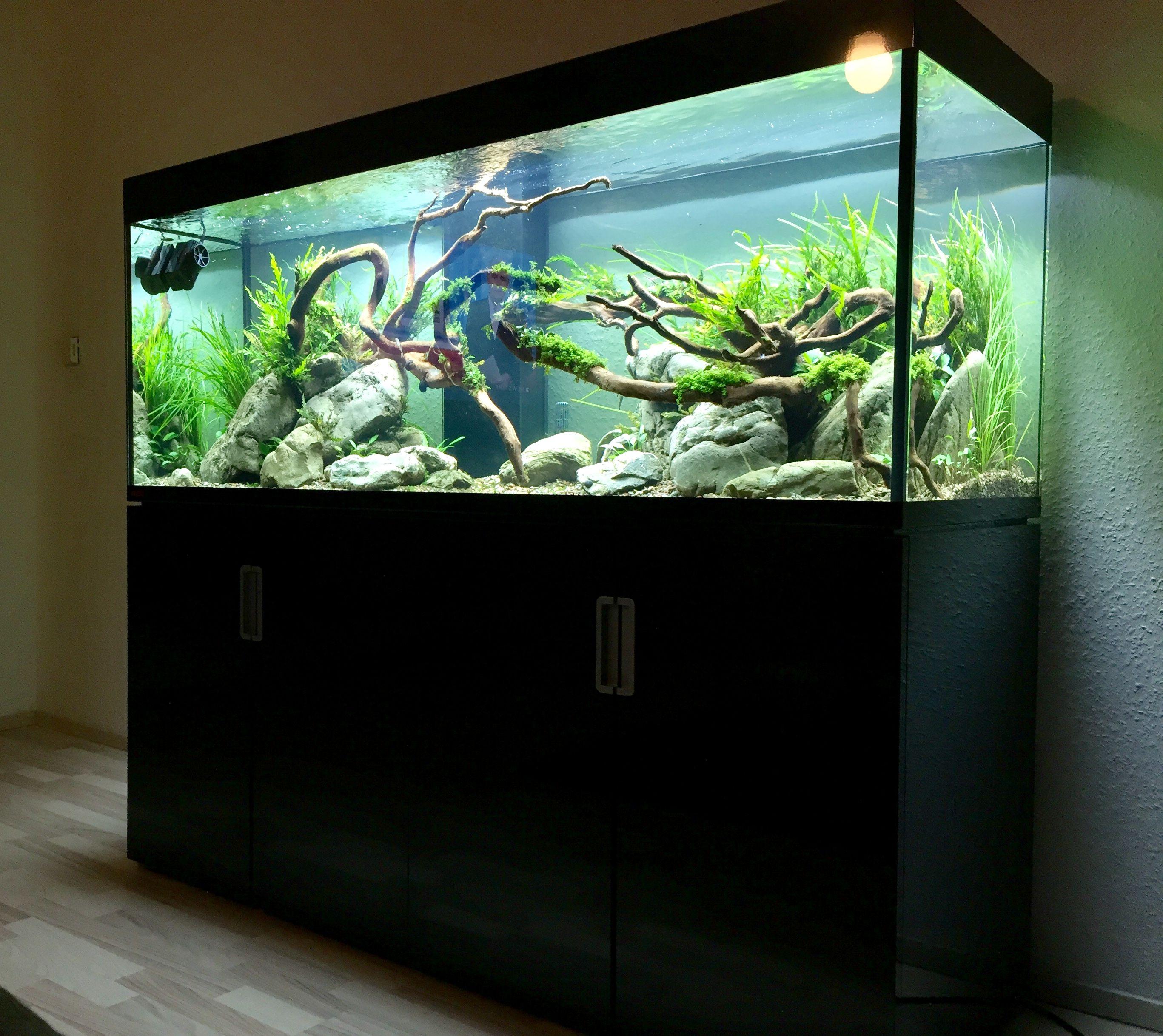 Aquarium OSAKA osaka 260