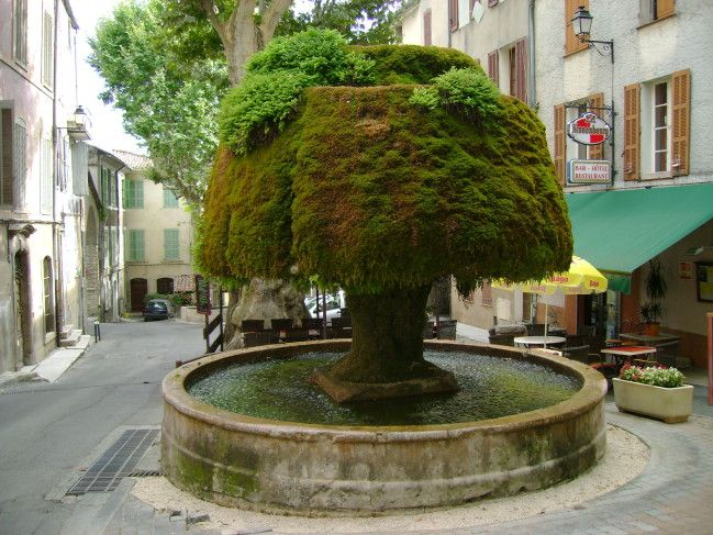 fontaine moussue...