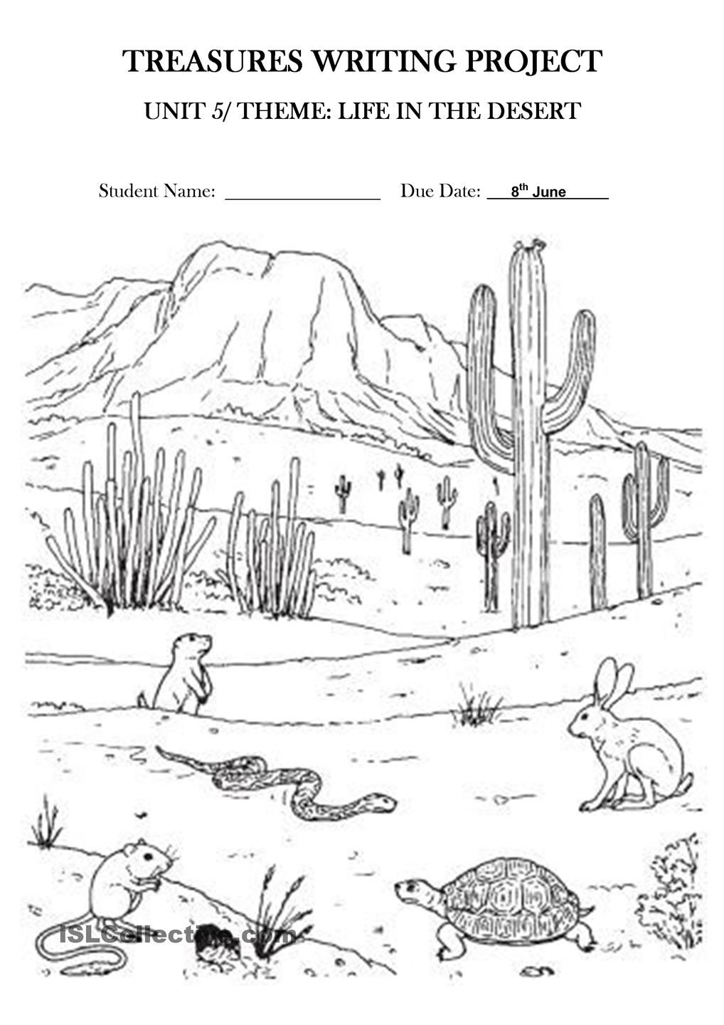 Life in the desert: Treasures Writing Project Unit 5 ...