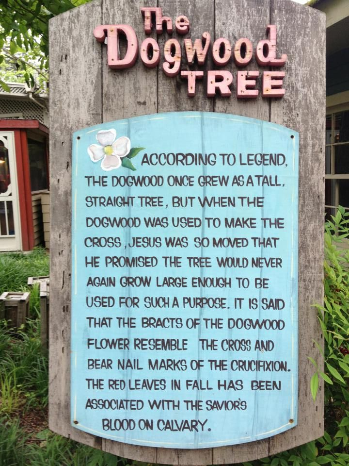 Legend Of The Dogwood Tree My Mawmaw Told Me About This Also The