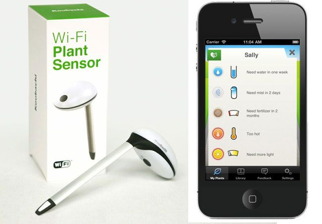 Koubachi Wireless Plant Sensor Lets Your Plant Talk Via iOS - Koubachi has today released a great gadget to help monitor and save our plants from neglect, linking them directly to your iOS devices. Koubachi's Wi-Fi Plant Sensor can monitor soil moisture, temperature and light intensity via its built-in Wi-Fi module. Once the new Koubachi Wireless Plant Sensor is calibrated and setup in your plant pot. It will automatically send you alerts when your plant requires a little attention and care.