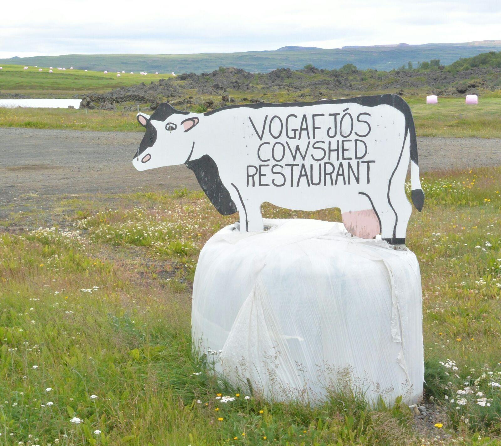 Vogafoss Cowsheed Restaurant, Island. Lecker essen und trinken und ganz nebenbei die Kühe im Stall beobachten.
