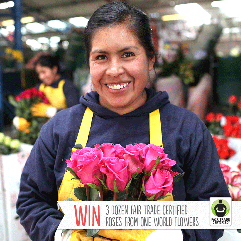 Win 3 dozen roses just in time for Mother's Day! Enter to win #FairTrade roses grown with love from One World Flowers here: http://fairtradeusa.org/moms#giveaway  #FairMoms