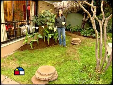 C mo arreglar el antejard n mi jardin pinterest for Como disenar mi jardin