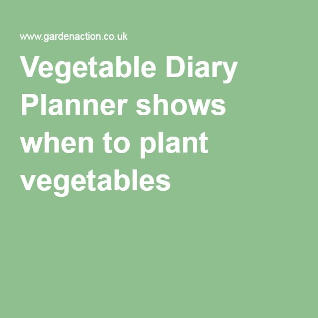 Vegetable Diary Planner shows when to plant vegetables