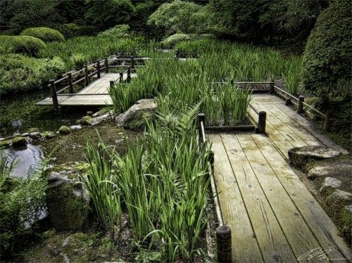 Japanese Water Gardens Design | Home Interior Design