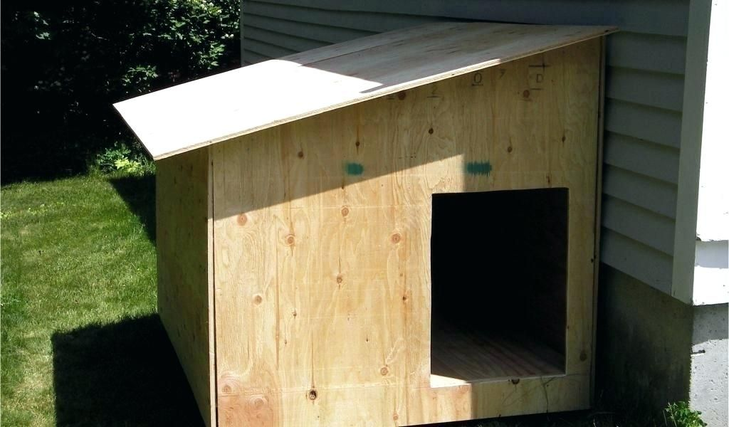 Diy Dog House Kit Build A Dog House