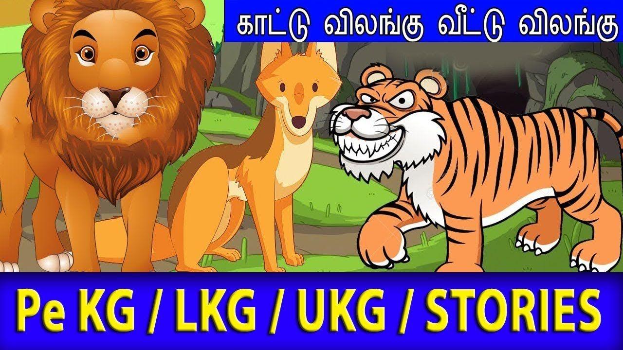 காட்டு விலங்கு / வீட்டு விலங்கு Animal Names in Tamil