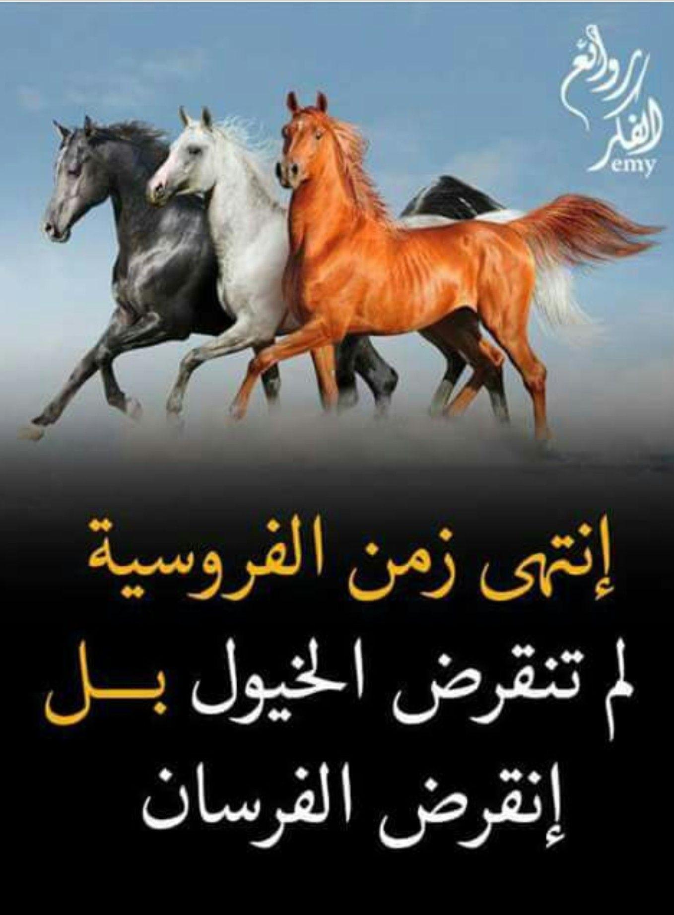 من روائع الفكر Arabic Quotes Cool Words Arabic Poetry