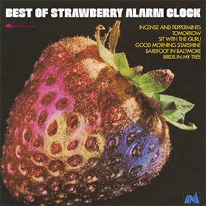 The Strawberry Alarm Clock 	 The Best of the Strawberry Alarm Clock - LP