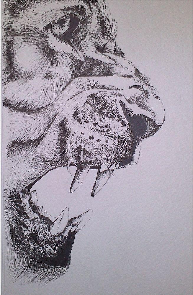 'Lion' by annie-fine-art