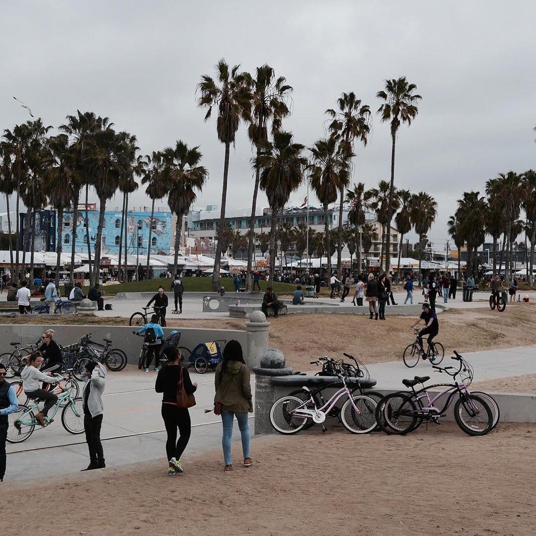 Venice Beach er også et super fedt sted at tage hen dog vil jeg anbefale at man tager derhen en dag hvor det er sol;) - det er lidt kedeligt i gråvejr.. #studyabroad #csun #liveticalifornien #ucsjinternational #ucsjdk #ucsj #ucsjlærer #ucsjlaerer #ucsjroskilde #ucsjtakeover #venicebeach by universitycollegesjaelland