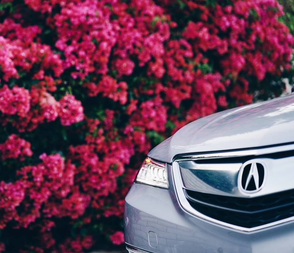 Pass The #petals With Flying Colors. #TLX #Acura