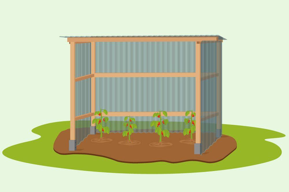 Tomatenhaus selbst bauen DIYAnleitung Tomaten.de