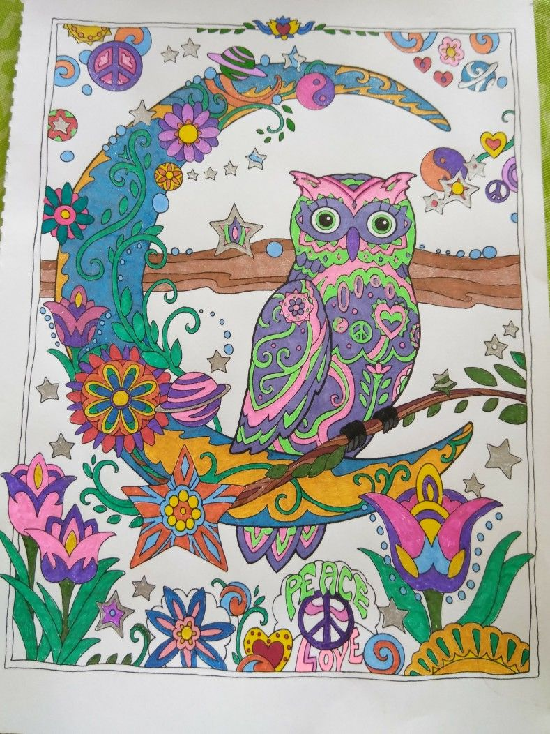 From The Creative Haven Owl Book Colored With Glitter Gel