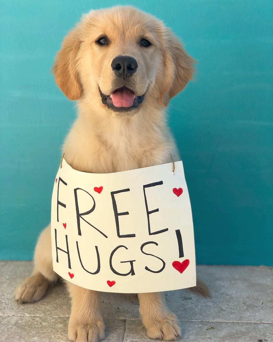 Norby On Instagram Free Hugs Pass It On