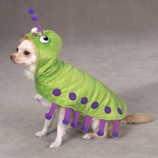 a59e51b5626 Green / Purple Caterpillar Pet Dog Costume w/ Bug Eyes and Antennae ...