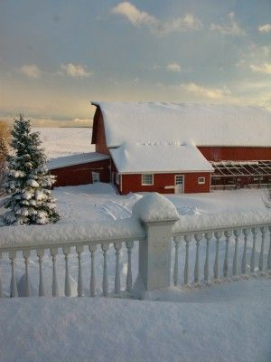 red barn surrounded by snow