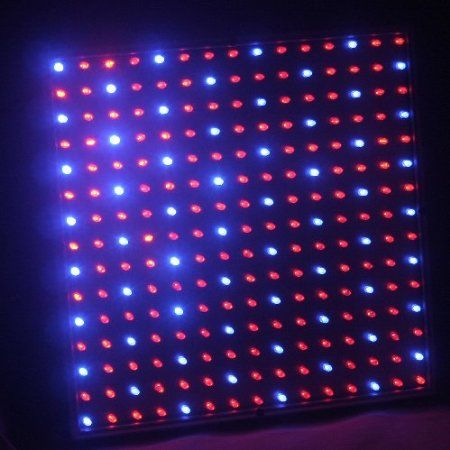 Amazon Com Ledwholesalers 2501Mx Blue Red 225 Led 13 8 400 x 300