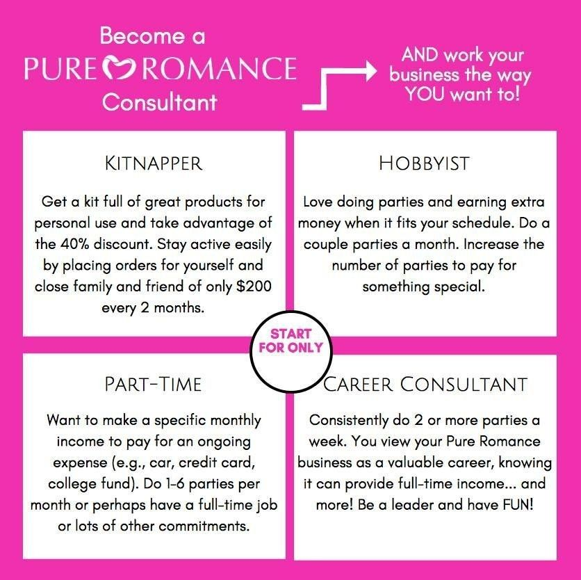 Different Types Of Consultants Kitnappers Hobbyist Part Time Or