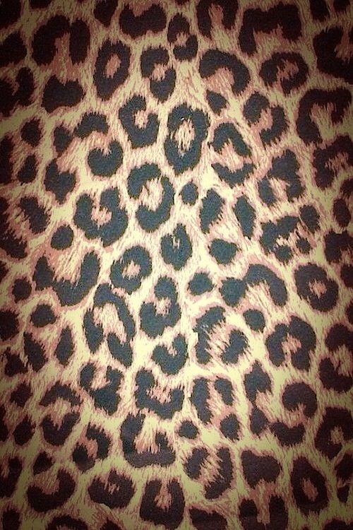 Leopard print wallpaper shared by Annα ℓⓘzz™ on We Heart It
