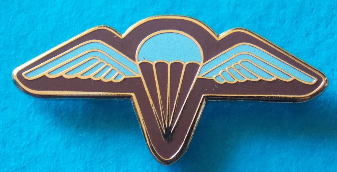 Parachute Regiment Lapel Pin Badge Gold Plated