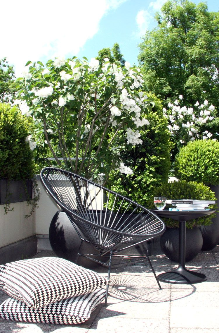 Acapulco chair outdoor - My Acapulco Chair In The Sun Http Aca Com