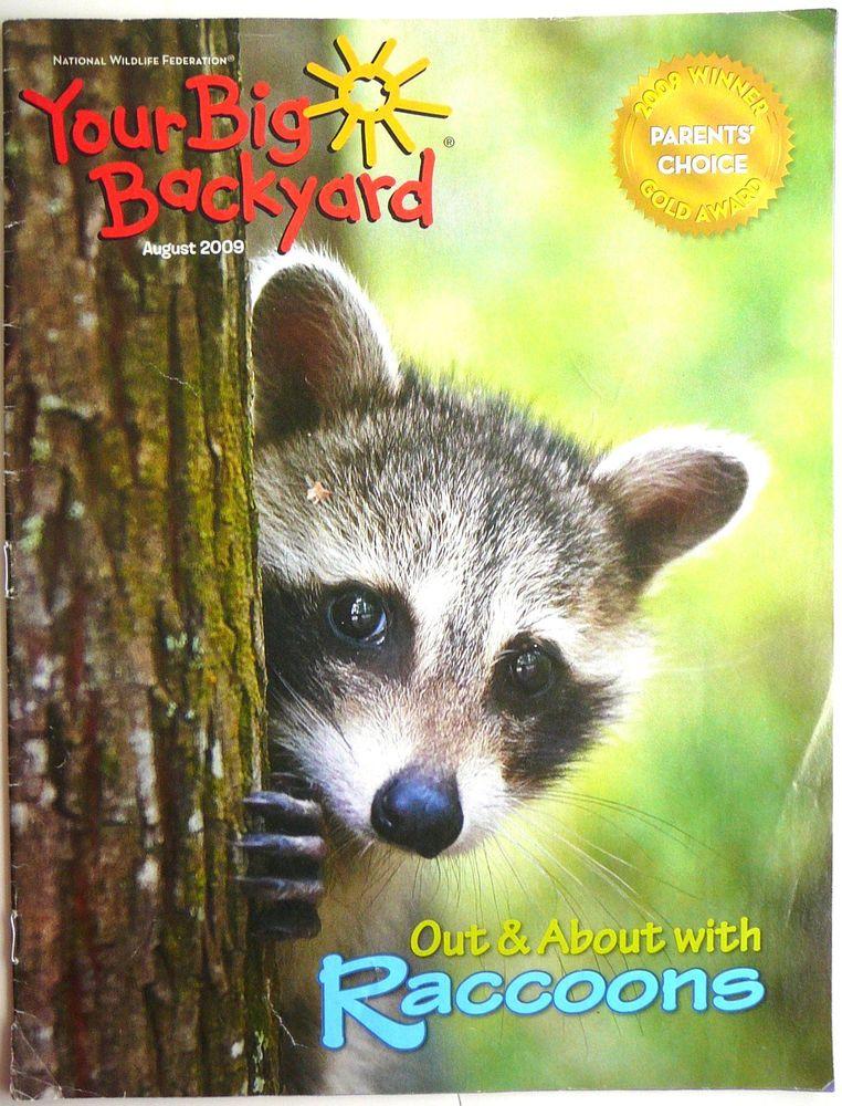 Your Big Backyard Part - 36: Your Big Backyard RACCOONS 2009 Nature Animals Science NWF Emerging Readers