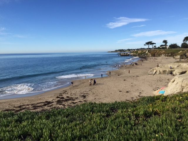 Dog Friendly Beach Pescadero Ca