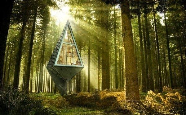 Modernes Haus Im Wald Konrad Wójcik 3d Projekt Visualisierung