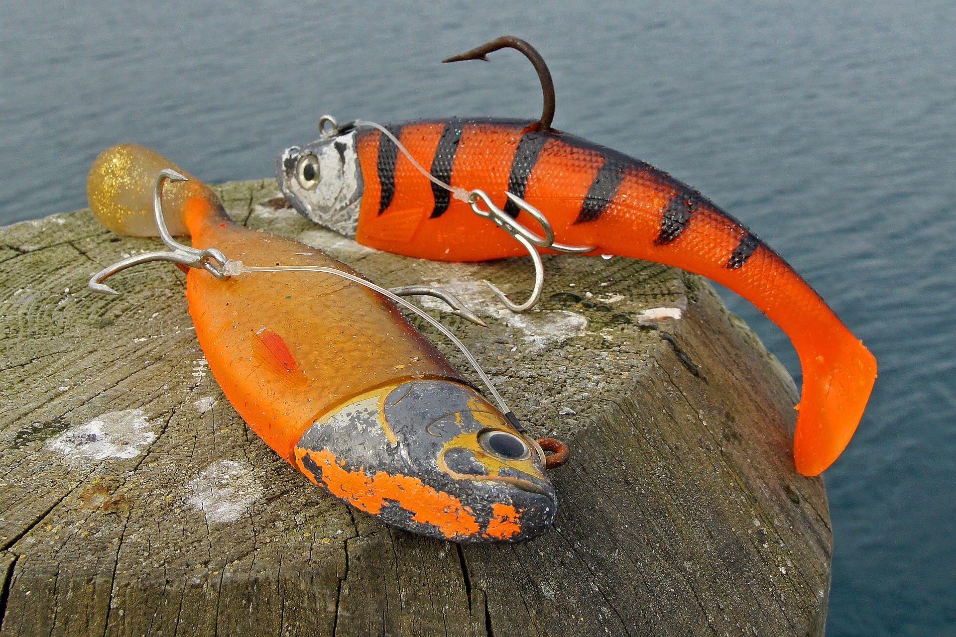 Gummifischangeln in Norwegen | Norwegen angeln, Fische und