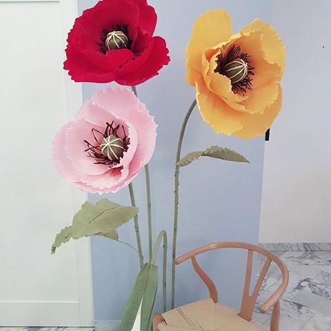 Paper flowers papermintdecor instagram photos paper flowers papermintdecor instagram photos and videos mightylinksfo