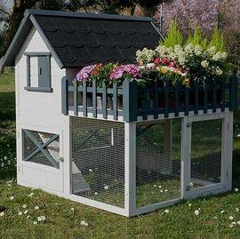Poulailler Oregon Avec Terrasse 3 A 4 Poules Poulailler Poulets De Basse Cour Fabriquer Un Poulailler