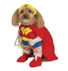 Dog Superhero Halloween Costumes