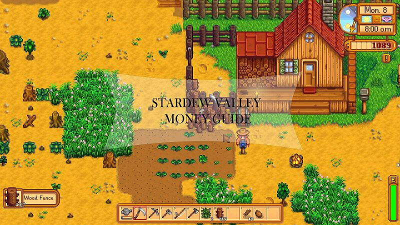 Money Cheat Stardew Valley Stardew Valley Cheating Valley