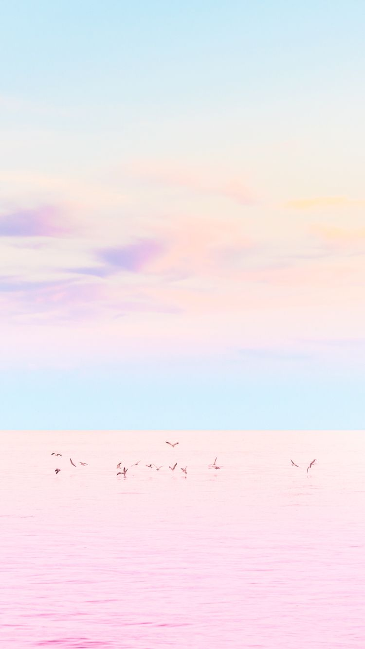 The Most Perfect Pastel Sunset Ever Check Out Our