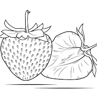 Aneka Gambar Mewarnai Gambar Mewarnai Buah Melon Untuk Anak Paud