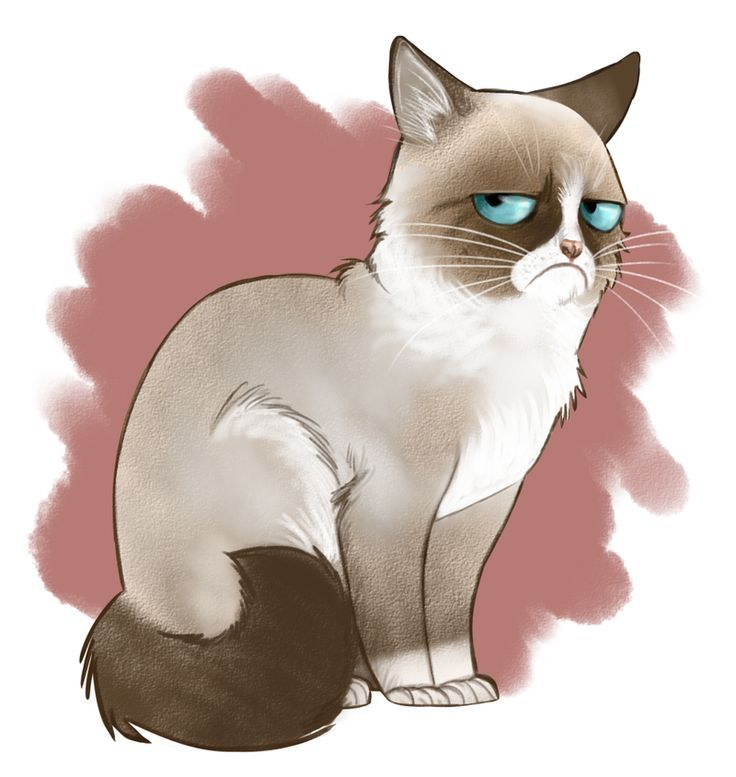 Grumpy Cat By Adlynh Deviantart On Deviantart Grumpy Cat Ideas Of Grumpy Cat Grumpycat Grumpy Cat By Adlynh Grumpy Cat Art Cartoon Cat Cat Illustration